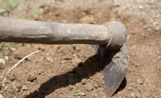 Рыхление грунта в огороде