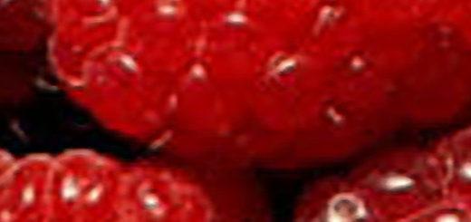 Малина сорта бальзам вблизи плоды