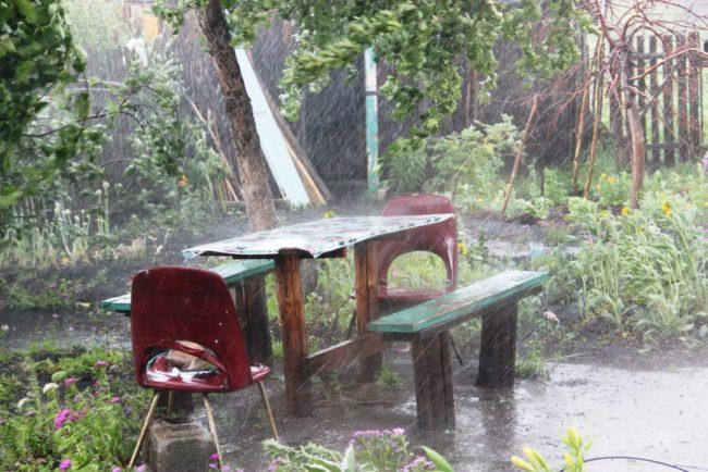 Дождь на садовом участке