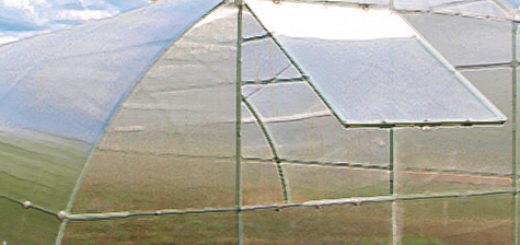 Теплица из поликарбоната 4х20 для выращивания клубники
