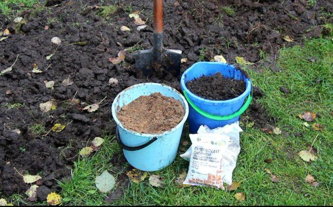 Разводим удобрения для малины карамелька
