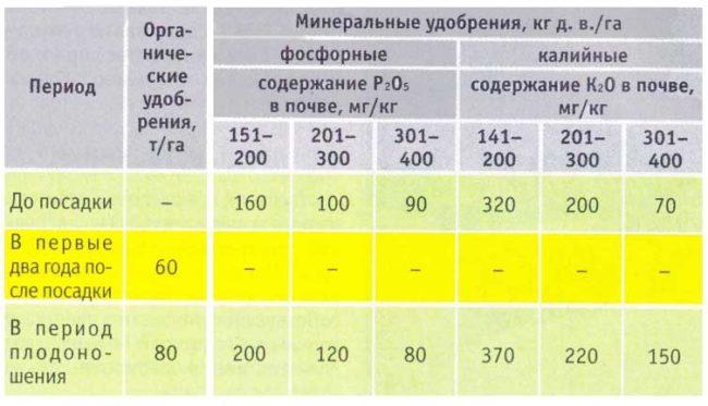 Нормы внесения подкормок для малины различаются в зависимости от возраста растения