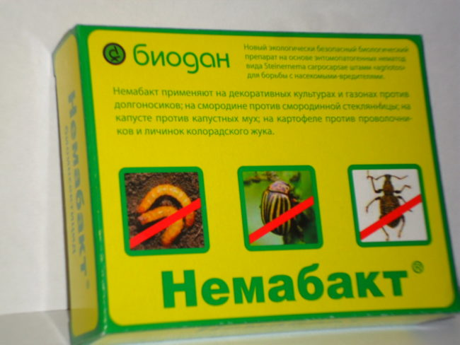 Препарат немабакт в упаковке