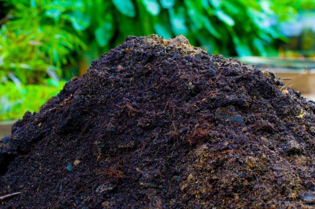 Куча компоста, перегнившего и готового для внесения в почву