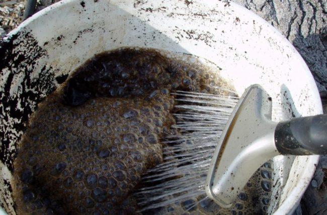 Жидкий навоз для подкормки малины