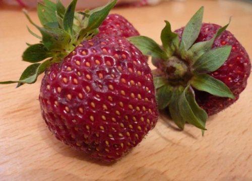 Спелая ягода клубники Черный принц