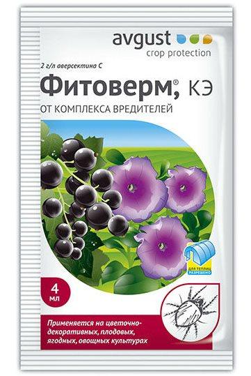 Пакетик препарата Фитоферм для уничтожения вредителей садовой клубники