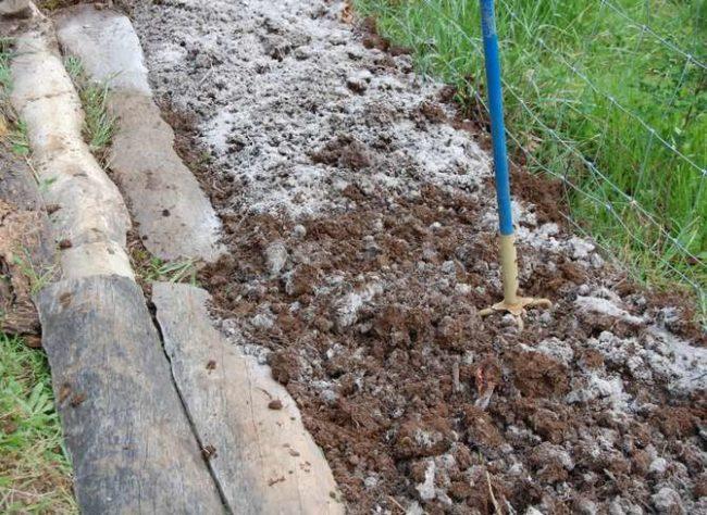 Подготовка грядки для садовой клубники, перекапывание грунта вилами и внесение древесной золы
