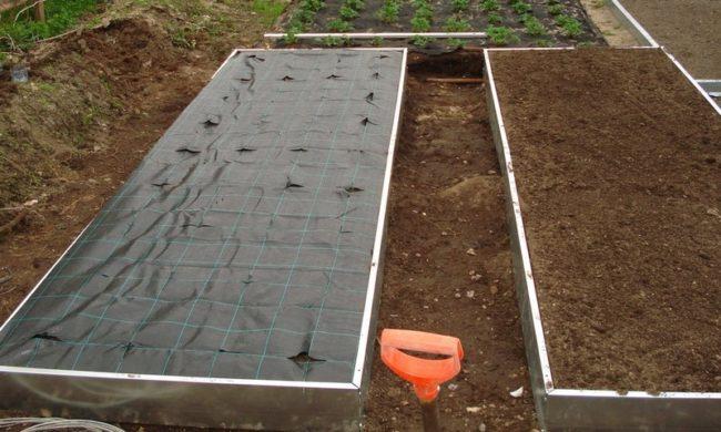 Грядка для клубники из досок на садовом участке