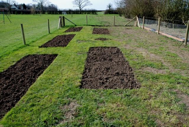 Грядки в огороде для посадки клубники