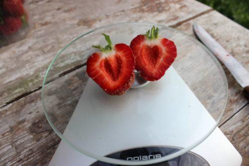 Разрезанный плод клубники Соловушка