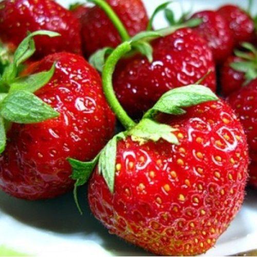 Вкусные ягоды клубники Зефир