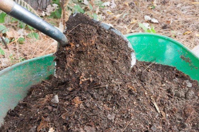 Перемешивание перегноя с садовой землей