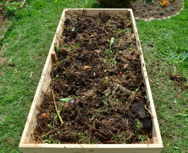 Компост на грядке из-под клубнике, восстанавливаем почву для новых посадок