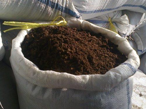 Мешок с перегноем для посадки рассады клубники