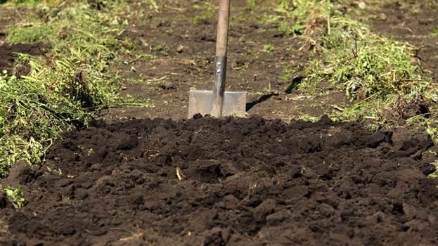 Штыковая лопата в земле
