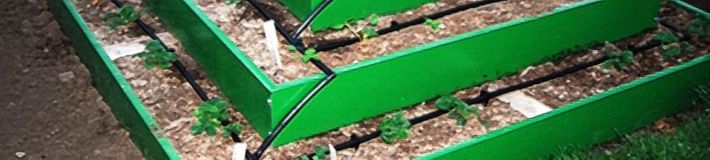 Грядка в форме пиармиды для клубники с системой капельного орошения