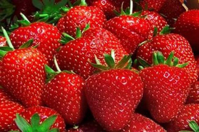 Спелые и крупные ягоды клубники