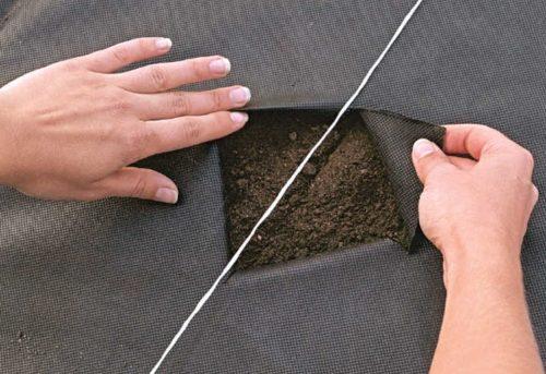 Отверстие в агроволокне для высадки саженца