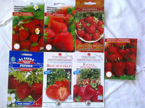 Пакеты с семенами садовой клубники