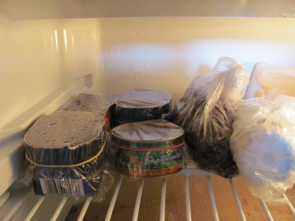 Баночки с семенами клубники на верхней полке холодильника
