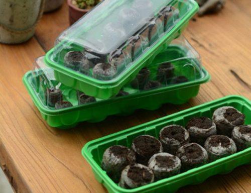 Специальные торфяные таблетки для выращивания рассады клубники