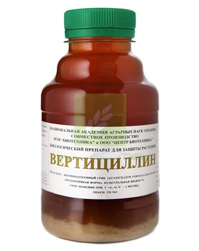Флакон с биологическим инсектицидом Вертициллин для уничтожения белокрылки на клубнике