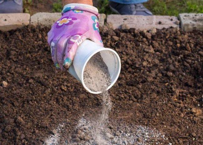 Древесная зола для удобрения почвы в осенний период