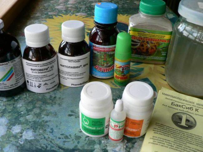 Препараты биологического происхождения для опрыскивания крыжовника от вредителей и заболеваний: Фитоверм, Фитолавин, Бак Сиб и другие
