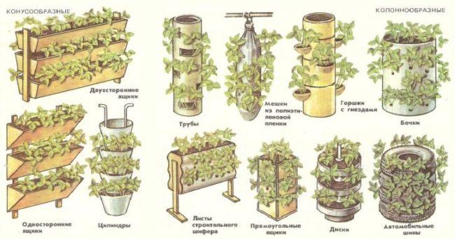 Емкости для выращивания клубники по голландской технологии