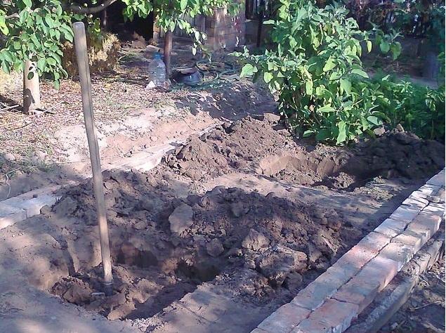 Две посадочные ямы для саженцев винограда и штыковая лопата для копки земли