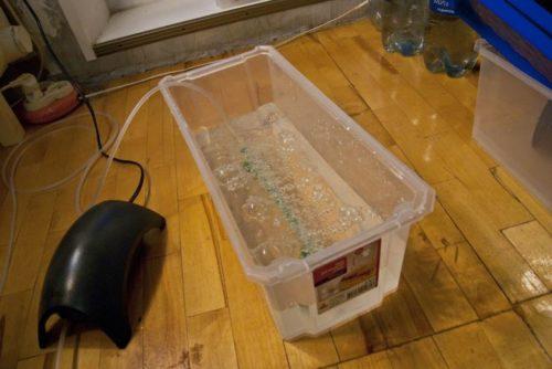 Пластиковая емкость с водным раствором и компрессор для выращивания клубники на гидропонике