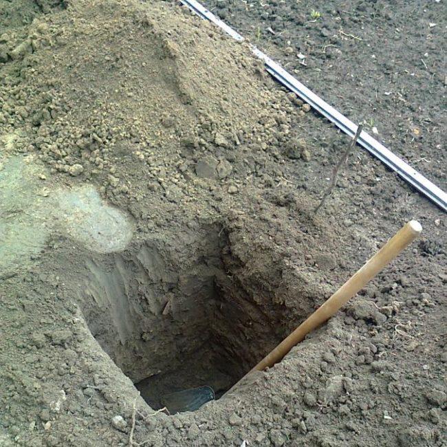 Яма для осенней посадки саженца винограда, кучка вынутой земли и лопата с деревянным черенком