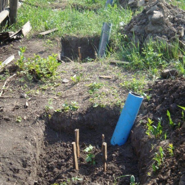 Две посадочные ямы для винограда сорта Кеша с саженцами и поливными трубами