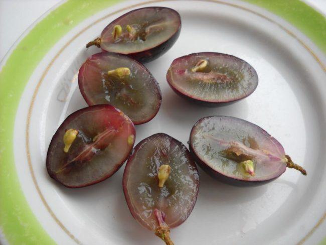 Разрезанные плоды винограда Фурор на фарфоровой тарелке с зеленой окантовкой