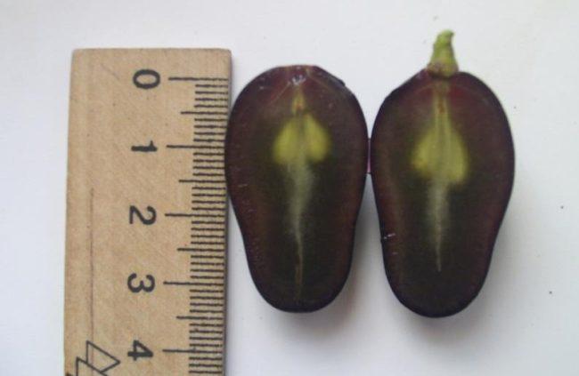 Разрез плода винограда Атос, видны косточки и мякоть бардового оттенка