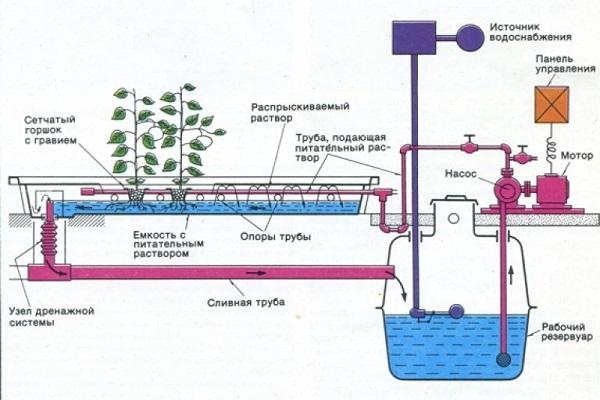 Схема системы гидропоники для домашнего выращивания клубники в питательном слое