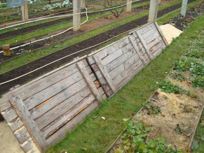 Деревянные щиты размерами 50х150 см над грядкой винограда, зимние укрытие сухого типа