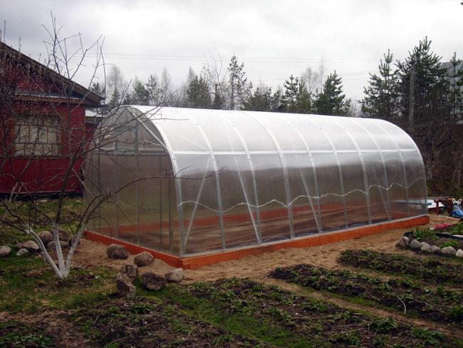 Арочная теплица из поликарбоната на металлическом каркасе для выращивания клубники круглый год