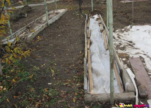 Два способа укрытия на зиму винограда