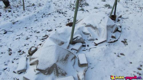 Укрытие винограда на зиму пленкой прижатой кирпичами