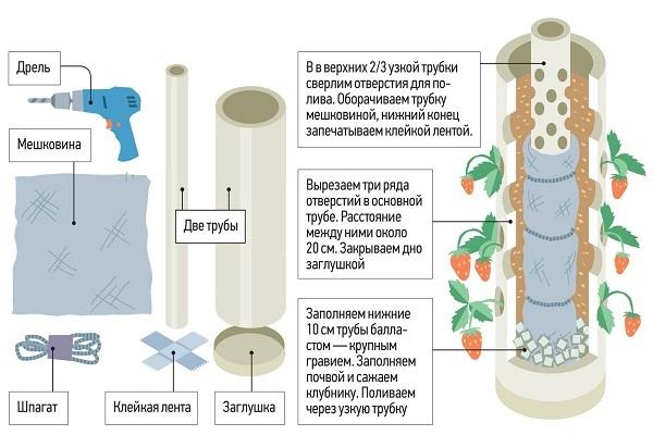 Схема и принцип изготовления самодельной системы гидропоники для выращивания клубники в домашних условиях