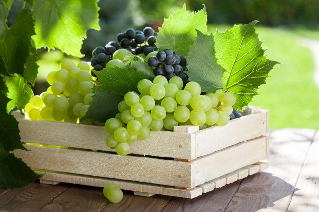 Деревянный ящик с гроздьями зеленого и фиолетового винограда столовых сортов