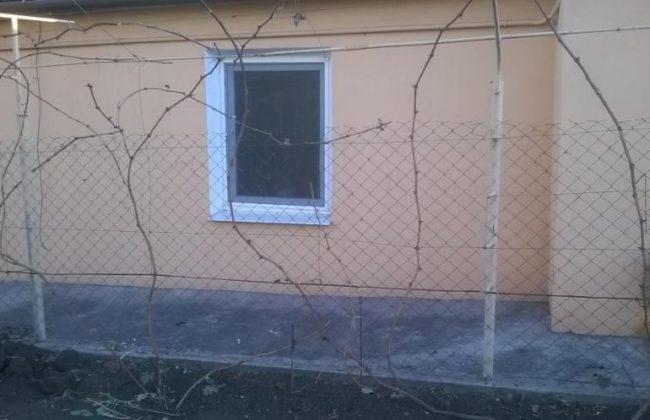 Виноградная лоза без листьев на шпалере ранней весной на фоне дома с окном