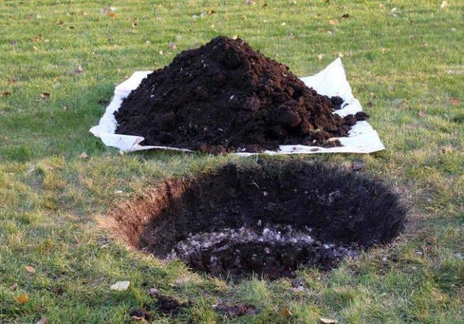 Куча из верхнего плодородного грунта на куске полиэтилена и посадочная яма для винограда