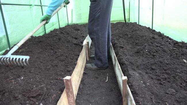 Мужчина с граблями подготавливает почву в теплице