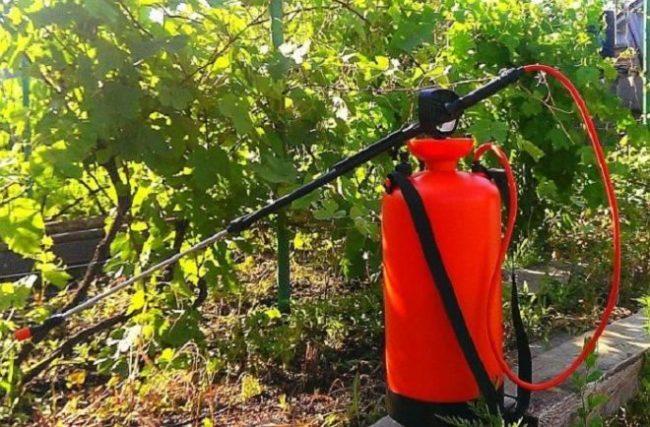 Оранжевый для распыления и обработки растений