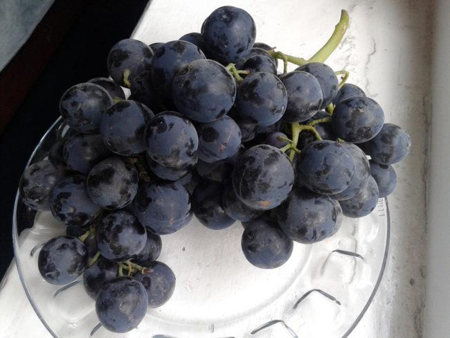 Кисть винограда гибридного сорта Бычий Глаз на стеклянной тарелке