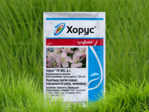 Упаковка препарата Хорус на фоне зеленой травы