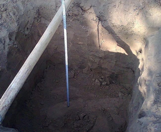 Посадочная яма для саженца винограда глубиной 80 см и черенок лопаты
